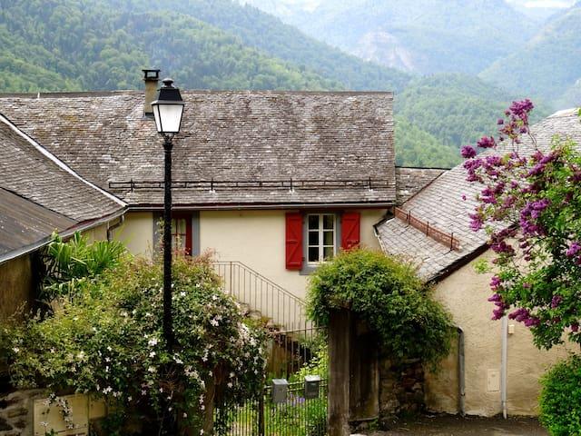 maison de charme en montagne - Laruns - Casa