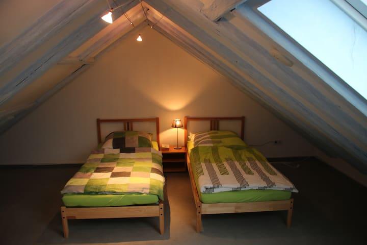 Schöne 2-geschossige Dachwohnung nähe Hbf/Zentrum - Zwickau - Apartment