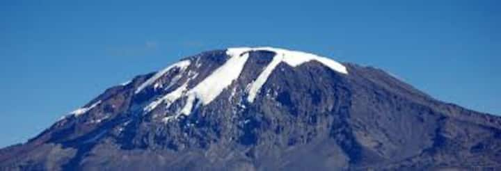 KILIMANJARO GREEN MONKEY HOSTEL & BACKPACKER'S