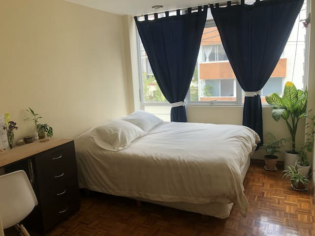 Nice room in Condesa