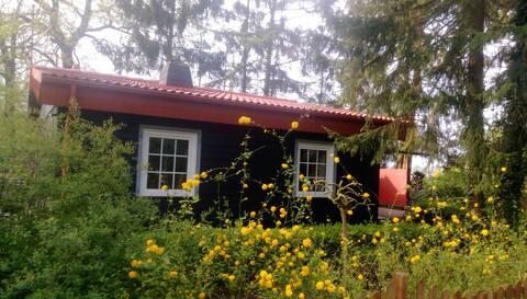 Hexenhäuschen mit  Wäldchen und schönen Garten.