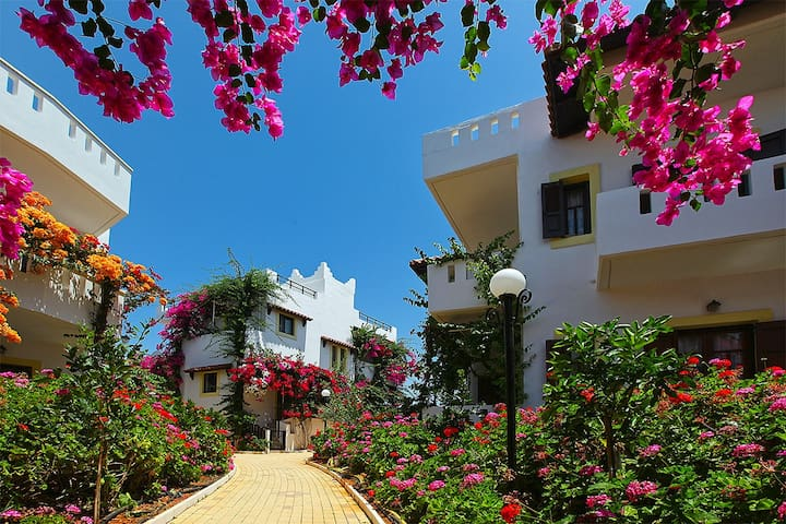 Bougainvillea flowers hanging over the balconies. A beautiful plant that gives colour to our surroundings.