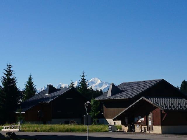 Vue du mont blanc depuis le parking