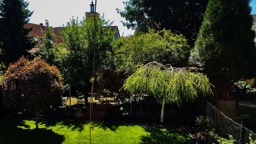 Quiet Apartment, separate entrance, garden view