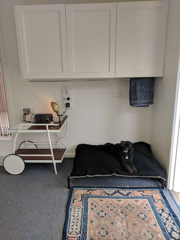 Set up for Doggy Guests