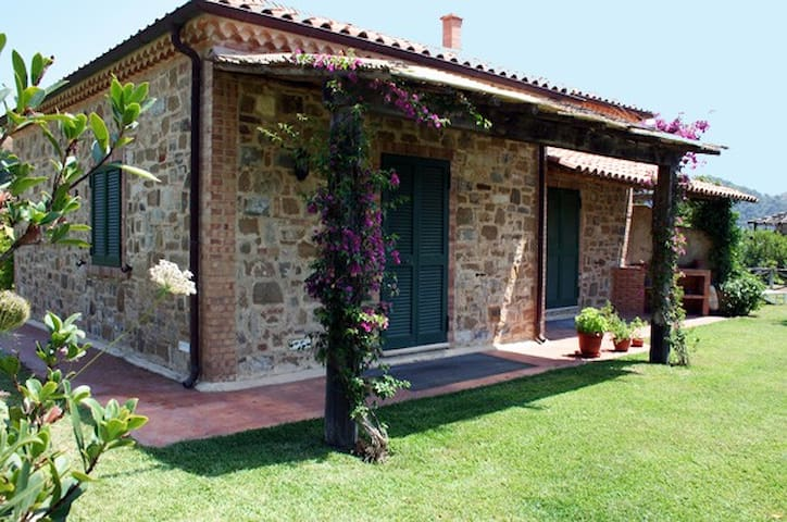 Villa Annunziata S.Marco di Castellabate - Castellabate - Apartamento