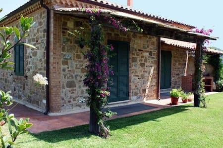 Villa Annunziata S.Marco di Castellabate - Castellabate - Daire