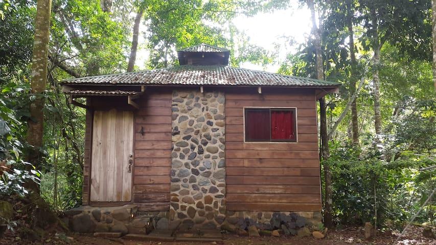 Cabaña rustica en la naturaleza con vista al rio - San Ramón Sur