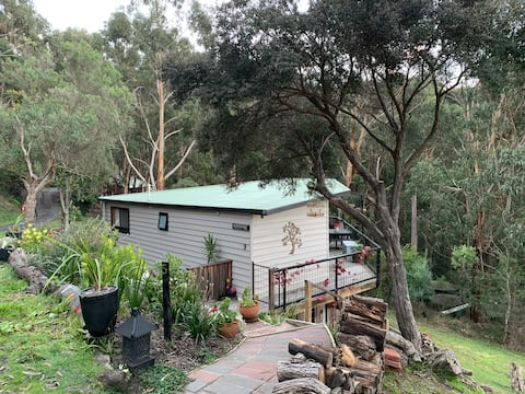 Character Cottage and Artist Studio close to Lorne