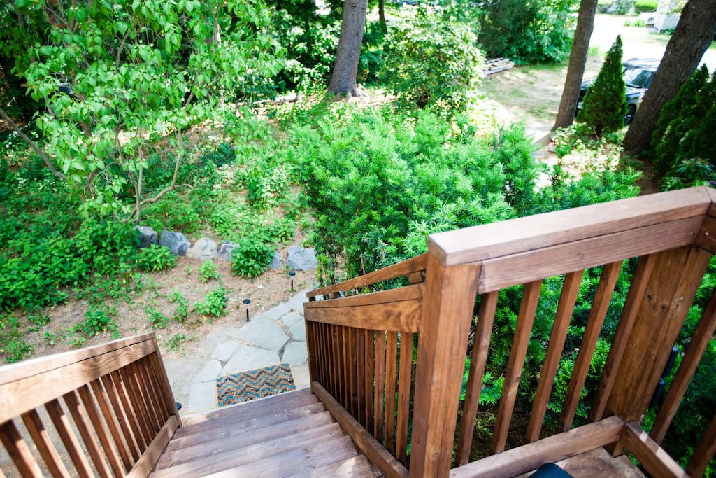 Looking down the steps to the deck that lead to the loft.