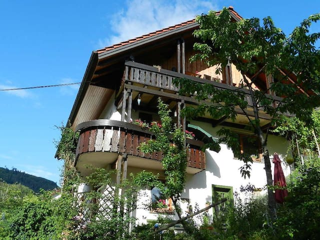 Holiday apartment with terrace in a little village nestling in the trees of the Northern Black Forest, next to the Black Forest National Park