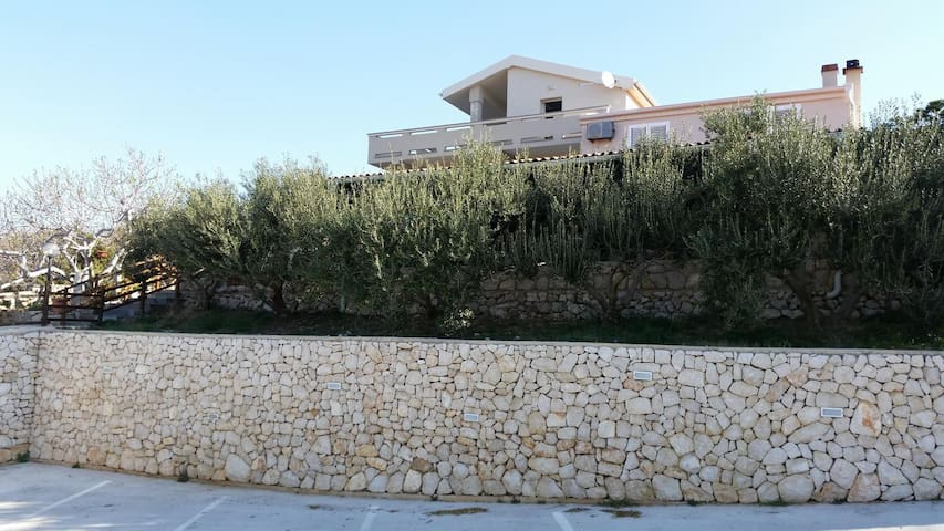 One bedroom apartment with terrace and sea view Kolan (Pag) (A-16482-a)