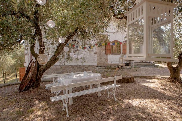 Casa White 1 - Casciana Terme Lari - Bed & Breakfast
