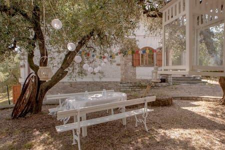 Casa White 1 - Casciana Terme Lari - 家庭式旅館