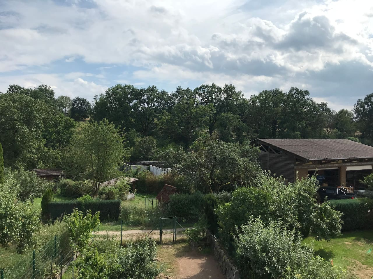 Ausblick vom Balkon ins Grüne - Richtung Feld & Wald