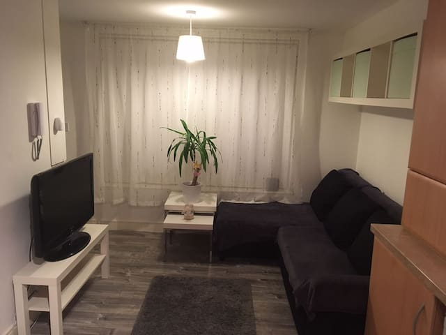 Cozy,clean&modern flat near Belfast - Greenisland - Apartmen