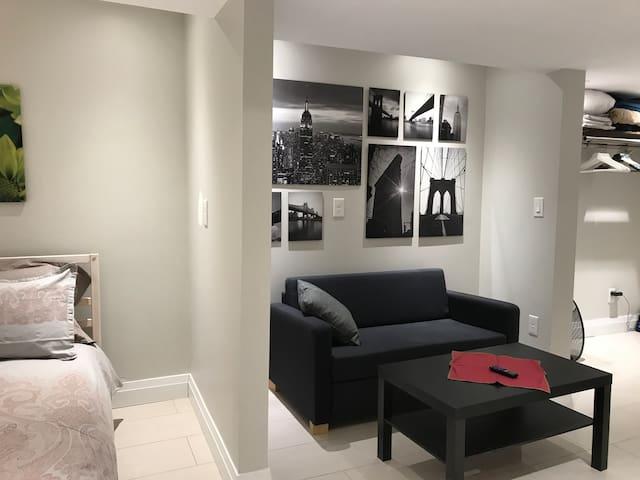 Modern Private Basement Flat West Toronto