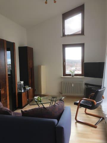Helles modernes 1 Zimmerapartment mit neuer Einbauküche und Süd-West-Balkon