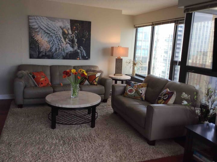 River North  2 bedroom condo with fabulous views