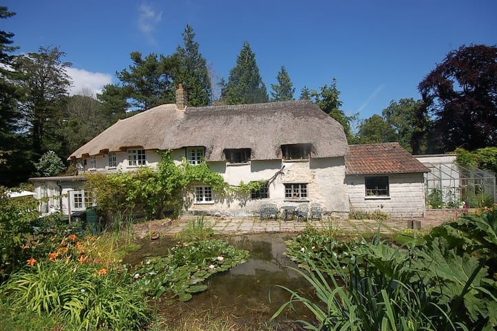 Character cottage in tranquil woodland grounds - Devon - Σπίτι