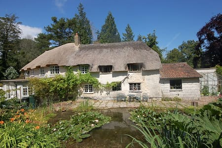Character cottage in tranquil woodland grounds - Devon - Haus