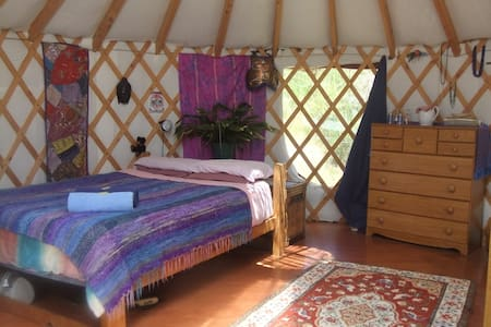 Yurt, in the country - Thorpe