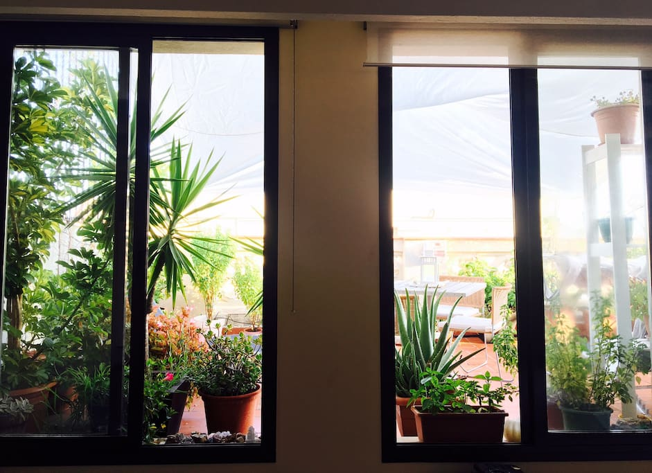 Amazing views of private garden from the living room