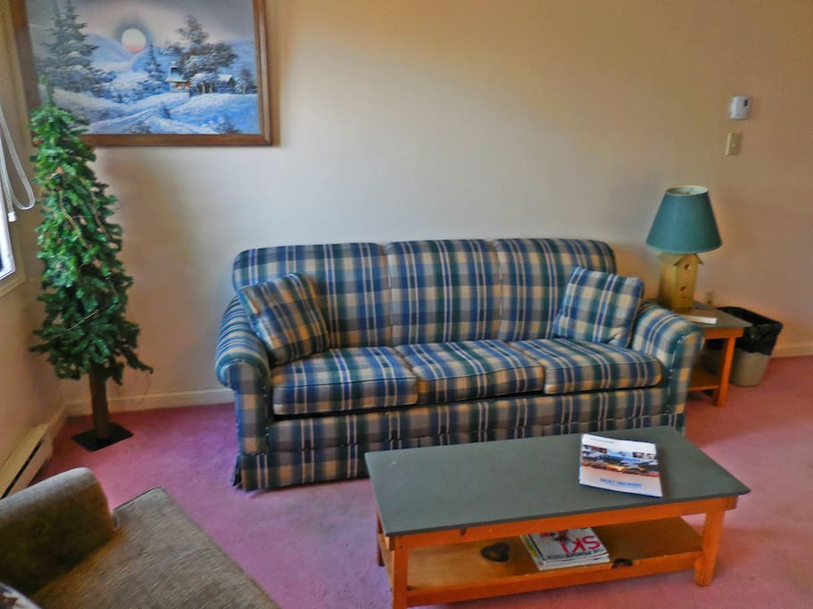 Foldout couch sleeps two (2)