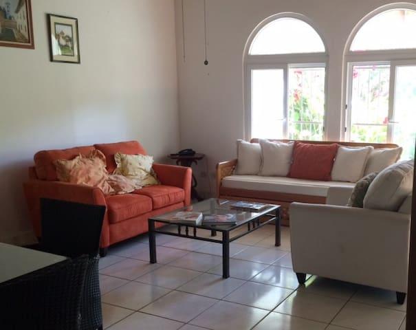 Depa céntrico, seguro y totalmente equipado - Managua - Apartment