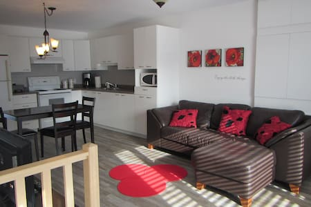 Confortable et spacieux appartement près de tout
