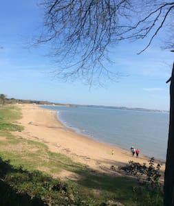 Woodland retreat on Woodstown Strand
