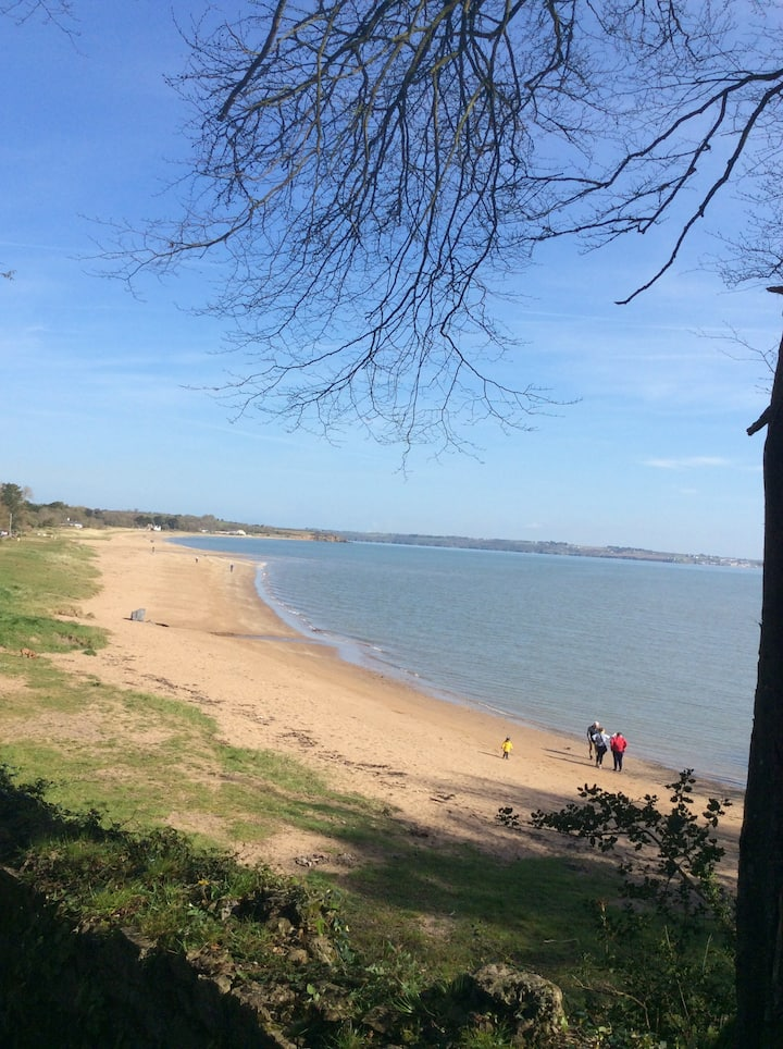 Woodland retreat on Woodstown Strand