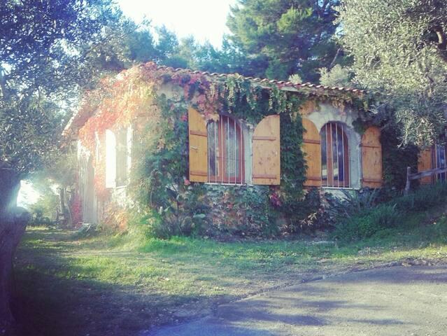 grande villa con giardino - Vieste - Rumah