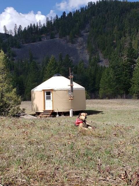 She Dances in Moonlight Yurt up Rock Creek