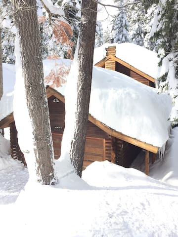 Tahoe Pines Log Cabin with hot tub - Tahoe Pines - Cabin