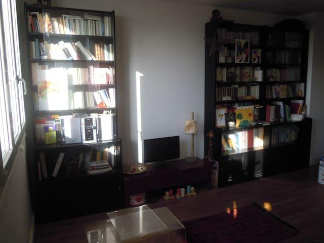 espace salon (canapé convertible - lit double)