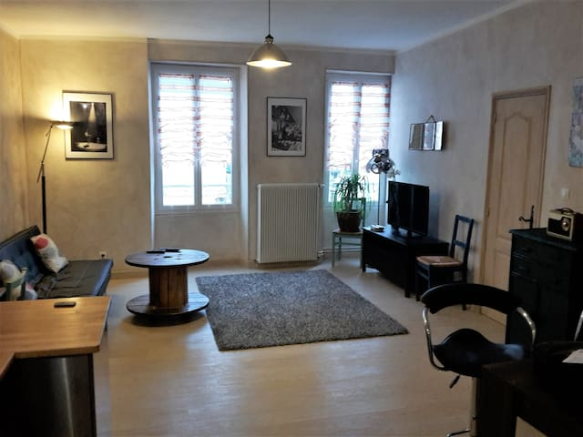 Charming apartment . City center. 3 rooms/5 people - Bourges - Apartamento
