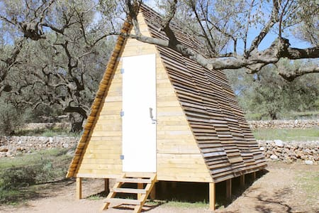 Unique eco cabin among the olive trees - Mas de Barberans - 小屋
