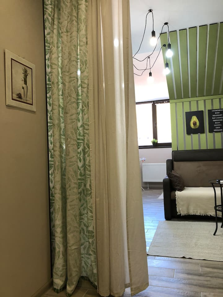 Уютная студия в Красной Поляне