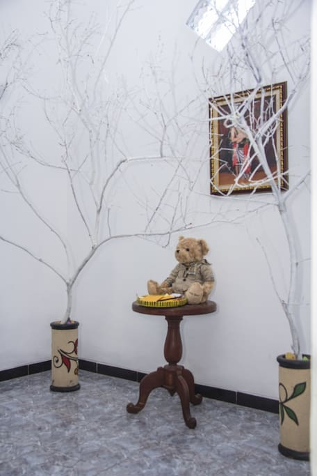 Common Space Area with a Wishing Tree