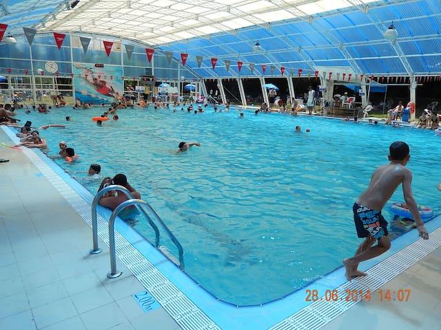 An outdoor swimming pool at Kibbutz Evron