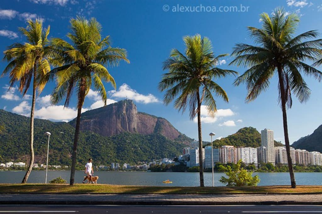 The beautiful Lagoa Rodrigo de Freitas is the perfect place to go for a jog or bike ride and is just 1 block away!