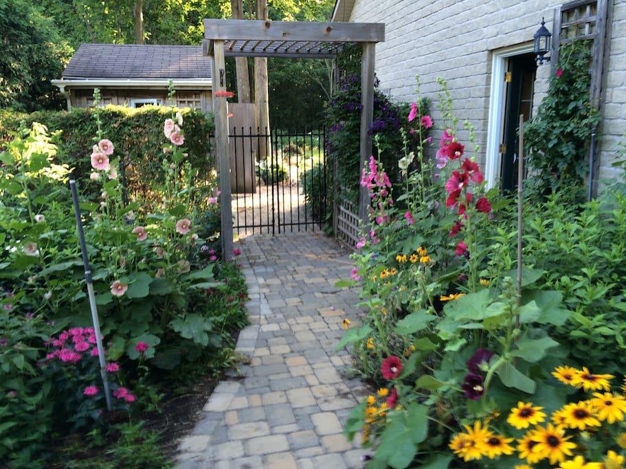 Walkway to back garden