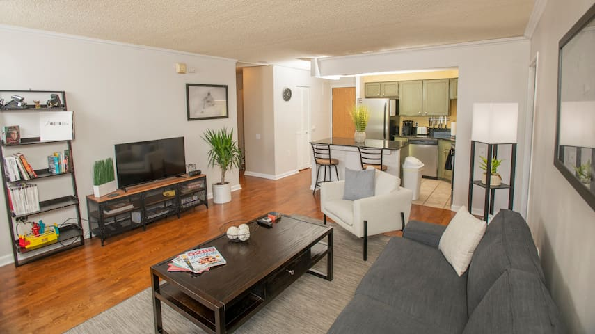 New Furniture 2-bed 2-bath, mountain view downtown