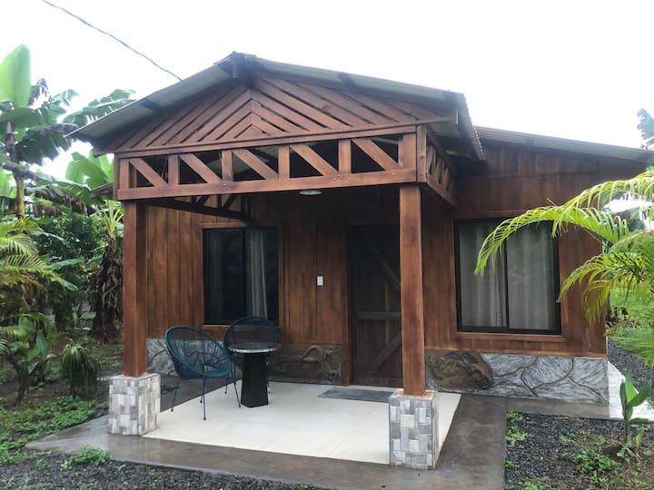 Iguana cabin near la fortuna