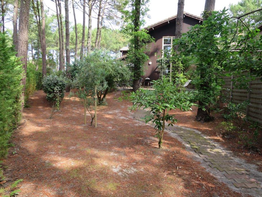 Jardin et cottage