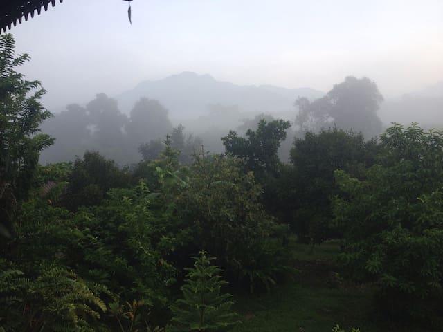 Mangosteen mountain view homestay - อําเภอคุระบุรี - 一軒家
