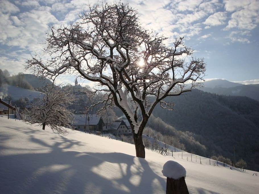 Stržišče in winter