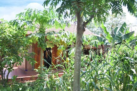 Bungalow Family with garden views