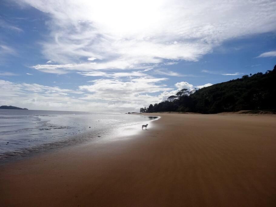 La plage, une vue 24h / 24, féérique